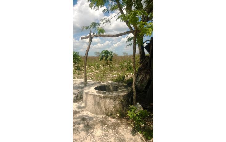 Foto de terreno comercial en venta en  , tetiz, tetiz, yucatán, 1250829 No. 07