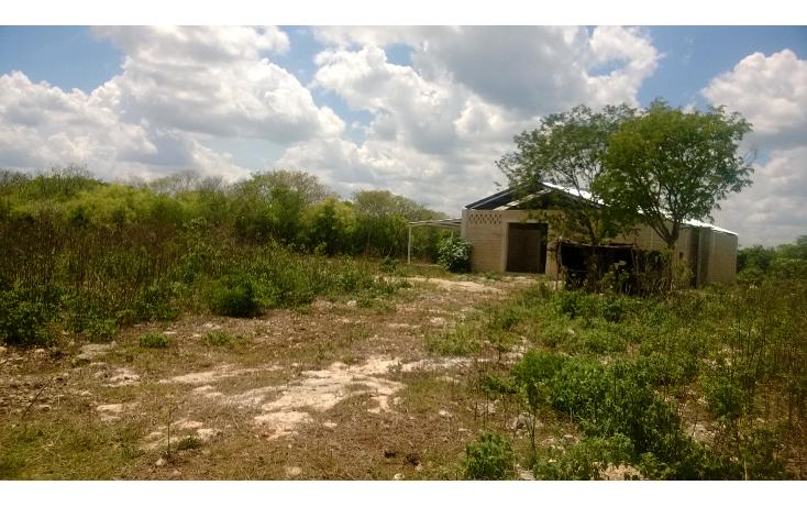 Foto de terreno comercial en venta en  , tetiz, tetiz, yucatán, 1250829 No. 09