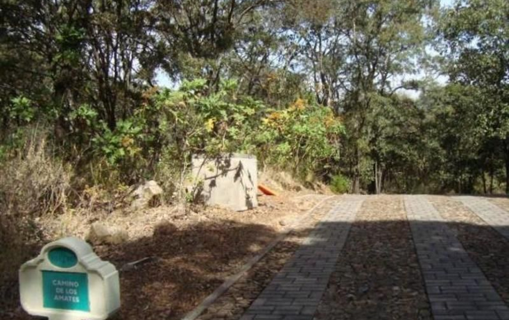 Foto de terreno habitacional en venta en  , teuchitl?n, teuchitl?n, jalisco, 1552970 No. 01