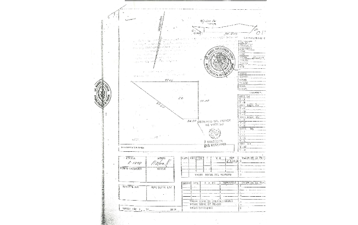 Foto de terreno habitacional en venta en  , teya, teya, yucatán, 1282921 No. 10