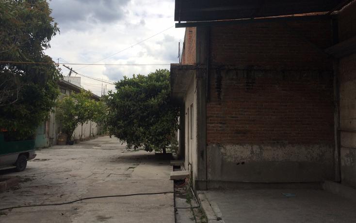 Foto de terreno comercial en venta en  , tezoquipa, atitalaquia, hidalgo, 1240499 No. 09
