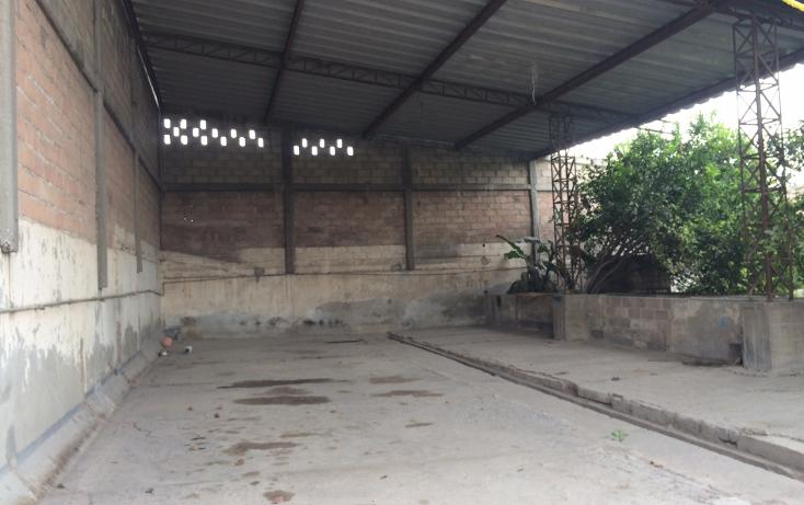 Foto de terreno comercial en venta en  , tezoquipa, atitalaquia, hidalgo, 1240499 No. 10