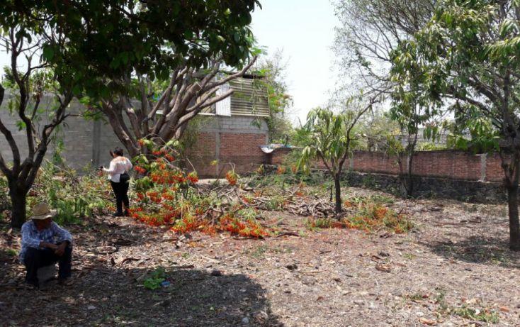 Foto de terreno habitacional en venta en, tezoyuca, emiliano zapata, morelos, 2042406 no 02