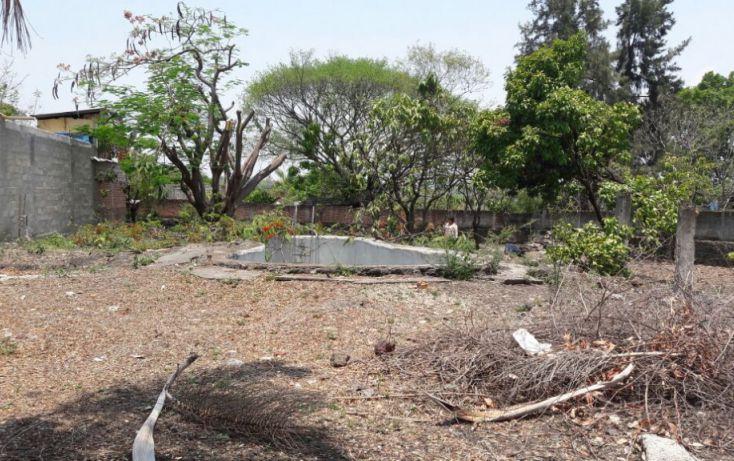 Foto de terreno habitacional en venta en, tezoyuca, emiliano zapata, morelos, 2042406 no 05