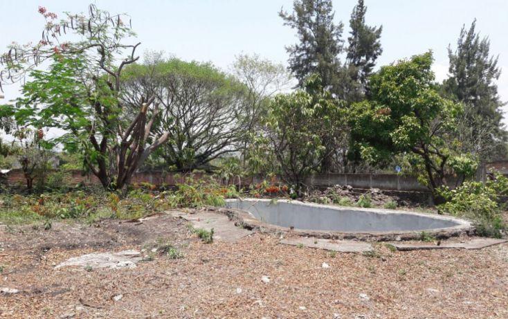 Foto de terreno habitacional en venta en, tezoyuca, emiliano zapata, morelos, 2042406 no 06