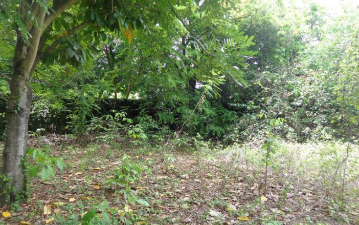 Foto de terreno habitacional en venta en ticman 10, ticuman, tlaltizapán de zapata, morelos, 1988484 no 06
