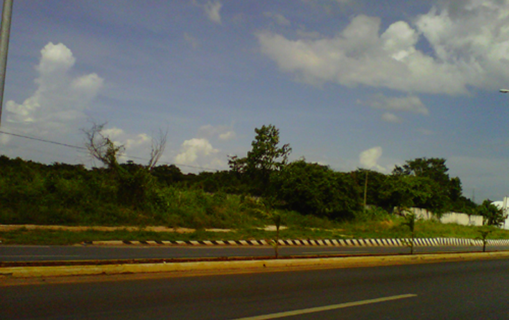Foto de terreno comercial en venta en  , ticul centro, ticul, yucat?n, 1134473 No. 08