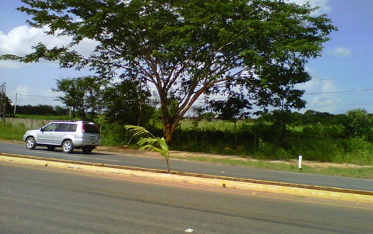 Foto de terreno comercial en venta en  , ticul centro, ticul, yucat?n, 1134473 No. 09