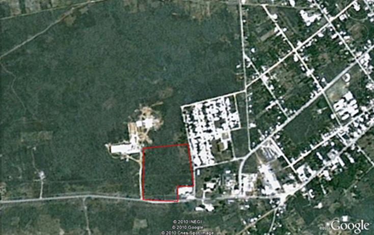 Foto de terreno comercial en venta en  , ticul centro, ticul, yucat?n, 1134473 No. 16