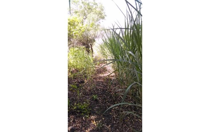 Foto de terreno habitacional en venta en  , tierra colorada, paso de ovejas, veracruz de ignacio de la llave, 1435589 No. 04