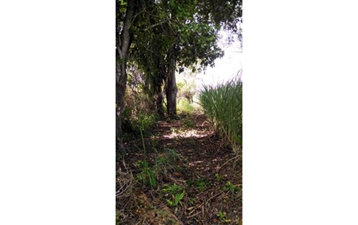 Foto de terreno habitacional en venta en  , tierra colorada, paso de ovejas, veracruz de ignacio de la llave, 1435589 No. 05