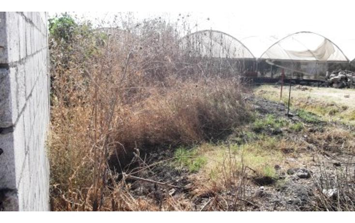 Foto de terreno comercial en venta en  , tierra larga, cuautla, morelos, 1128397 No. 02