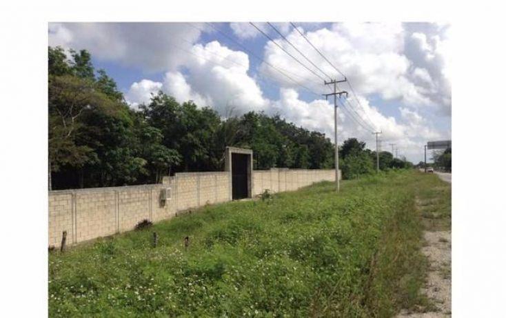 Foto de terreno habitacional en venta en, tierra maya, benito juárez, quintana roo, 1113799 no 06