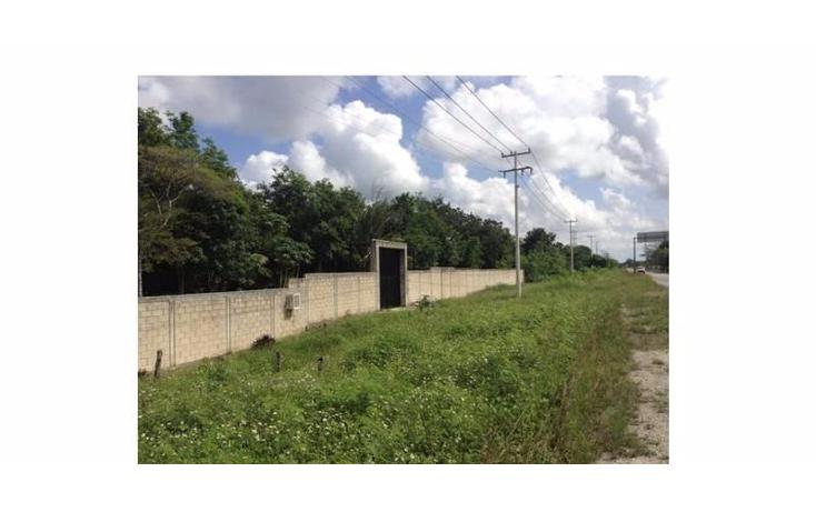 Foto de terreno habitacional en venta en  , tierra maya, benito juárez, quintana roo, 1113799 No. 06