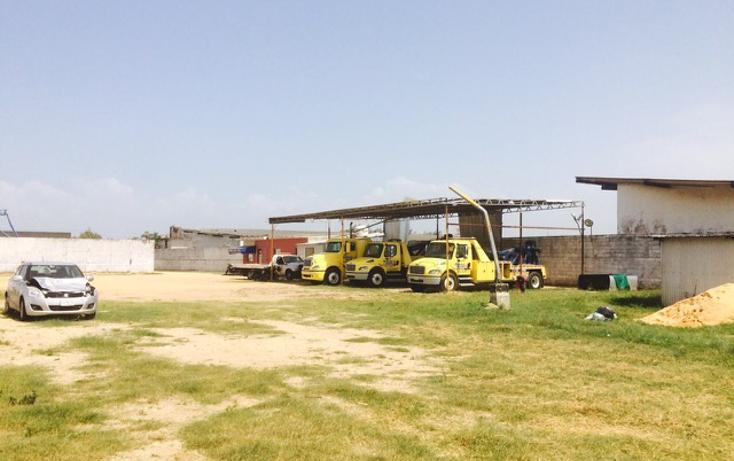 Foto de terreno comercial en renta en  , tierra nueva, coatzacoalcos, veracruz de ignacio de la llave, 1062747 No. 11