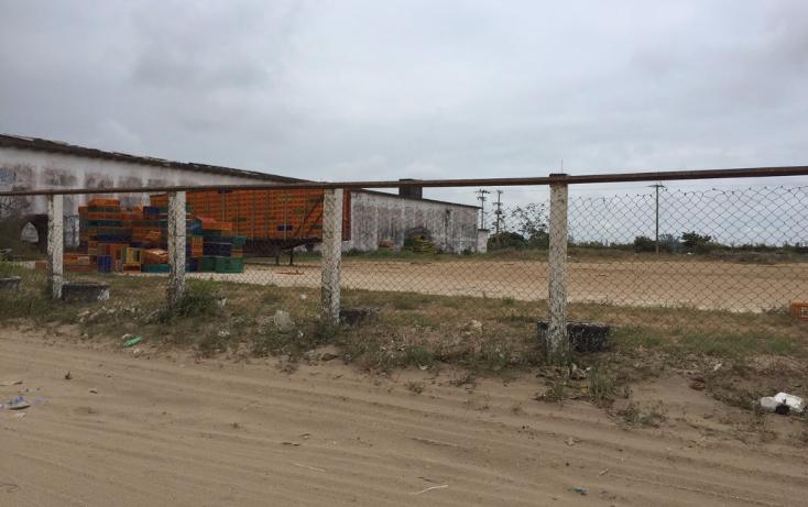 Foto de nave industrial en renta en  , tierra nueva, coatzacoalcos, veracruz de ignacio de la llave, 1114955 No. 08
