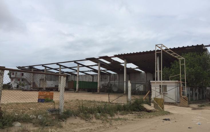 Foto de nave industrial en renta en  , tierra nueva, coatzacoalcos, veracruz de ignacio de la llave, 1114955 No. 09
