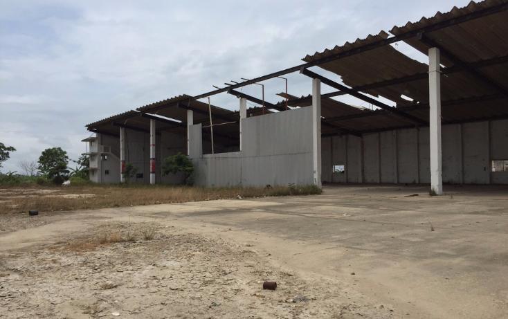 Foto de nave industrial en renta en  , tierra nueva, coatzacoalcos, veracruz de ignacio de la llave, 1124235 No. 01