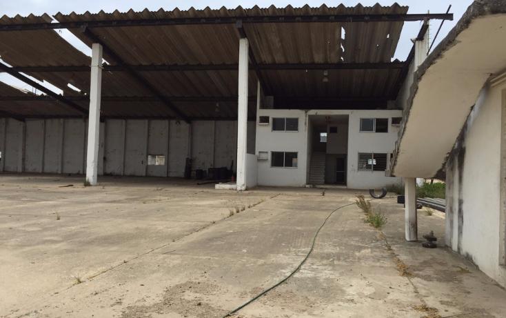 Foto de nave industrial en renta en  , tierra nueva, coatzacoalcos, veracruz de ignacio de la llave, 1124235 No. 03