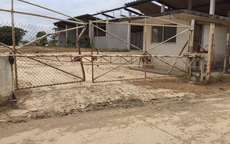 Foto de nave industrial en renta en  , tierra nueva, coatzacoalcos, veracruz de ignacio de la llave, 1124235 No. 04