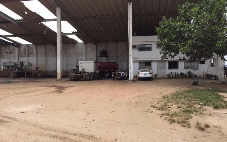 Foto de nave industrial en renta en  , tierra nueva, coatzacoalcos, veracruz de ignacio de la llave, 2624838 No. 02