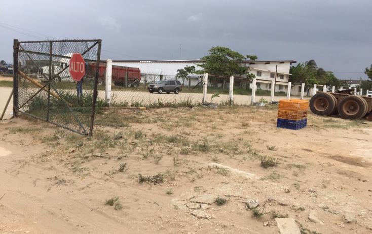 Foto de nave industrial en renta en  , tierra nueva, coatzacoalcos, veracruz de ignacio de la llave, 2624838 No. 03