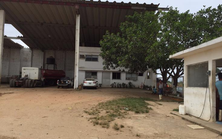 Foto de nave industrial en renta en  , tierra nueva, coatzacoalcos, veracruz de ignacio de la llave, 2624838 No. 10