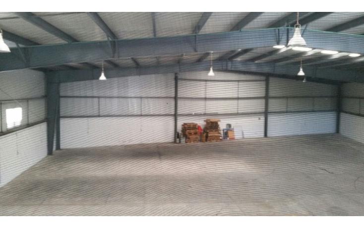 Foto de oficina en renta en  , tila, carmen, campeche, 2036390 No. 04
