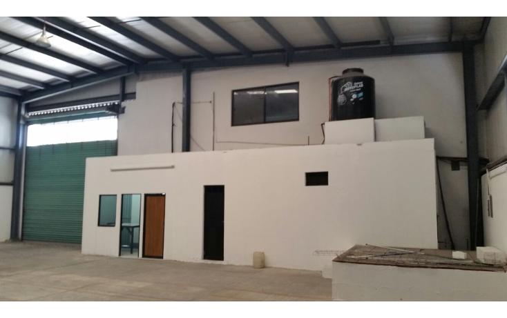Foto de oficina en renta en  , tila, carmen, campeche, 2036390 No. 05
