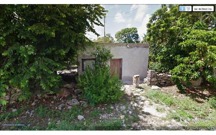 Foto de terreno comercial en venta en  , timul, motul, yucat?n, 1104865 No. 03