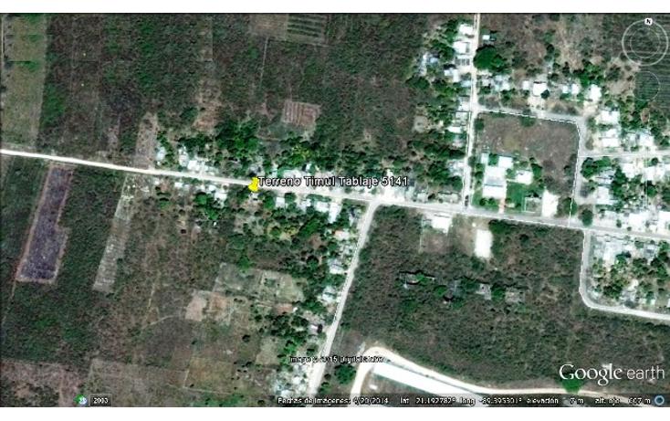 Foto de terreno comercial en venta en  , timul, motul, yucat?n, 1104865 No. 04
