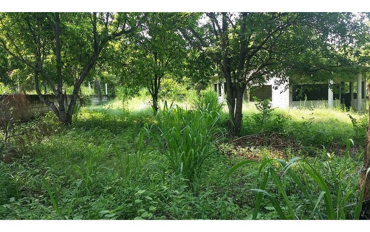 Foto de terreno habitacional en venta en  , tinajitas, actopan, veracruz de ignacio de la llave, 1548382 No. 03