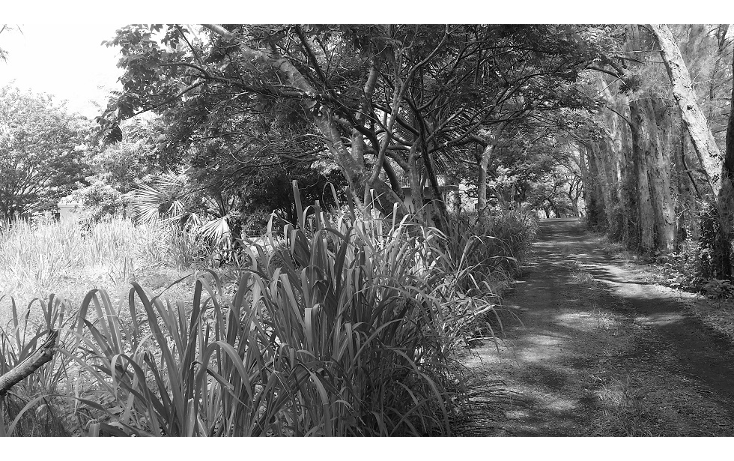 Foto de terreno habitacional en venta en  , tinajitas, actopan, veracruz de ignacio de la llave, 1548382 No. 05