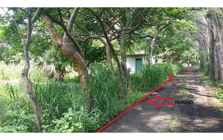 Foto de terreno habitacional en venta en  , tinajitas, actopan, veracruz de ignacio de la llave, 1548382 No. 06