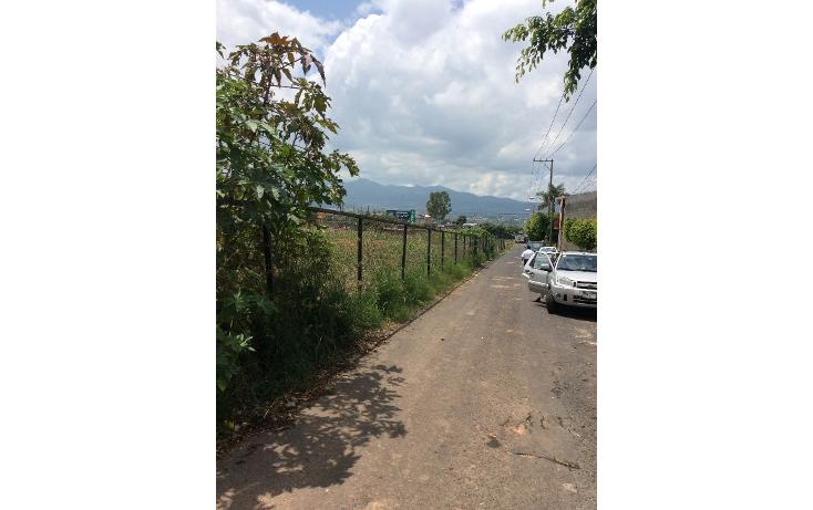 Foto de terreno comercial en venta en  , tinijaro, morelia, michoacán de ocampo, 1334761 No. 02