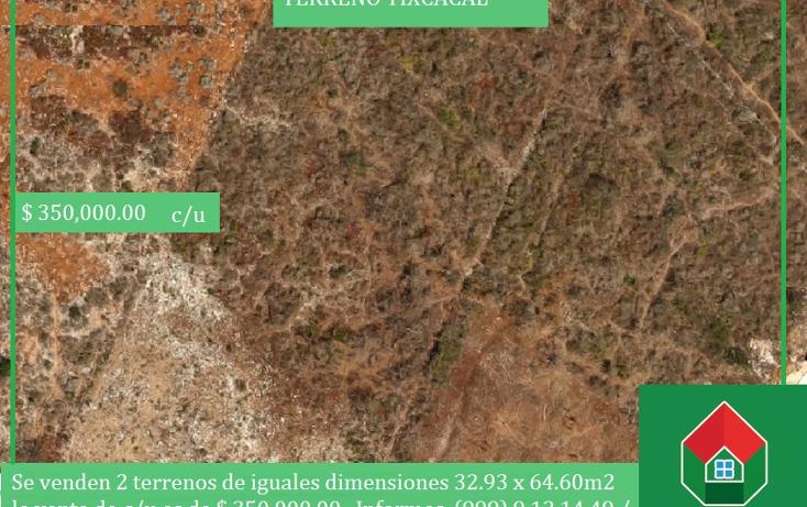 Foto de terreno habitacional en venta en  , tixcacal opichen, mérida, yucatán, 1733656 No. 01
