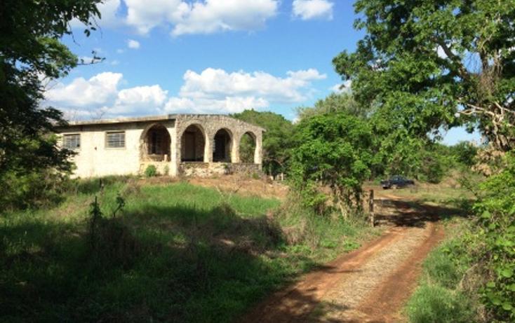 Foto de rancho en venta en  , tixcacaltuyub, yaxcabá, yucatán, 1198323 No. 01