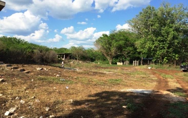 Foto de rancho en venta en  , tixcacaltuyub, yaxcabá, yucatán, 1198323 No. 11