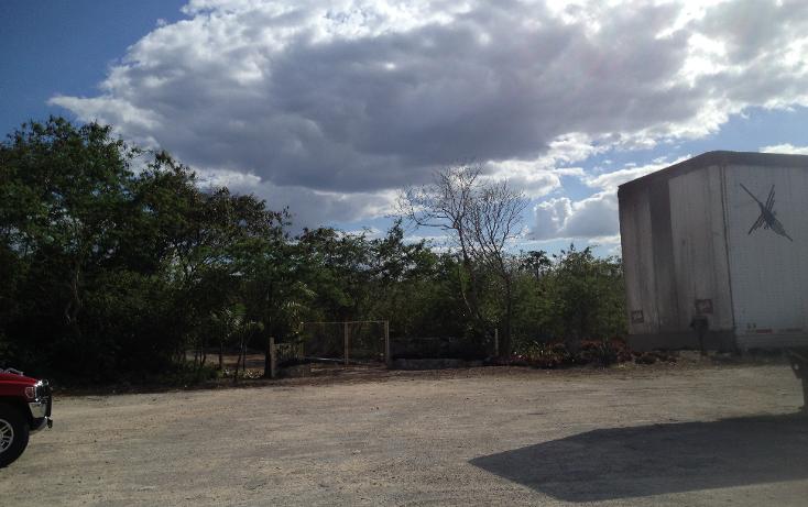 Foto de terreno habitacional en venta en  , tixkuncheil, baca, yucat?n, 1184905 No. 05