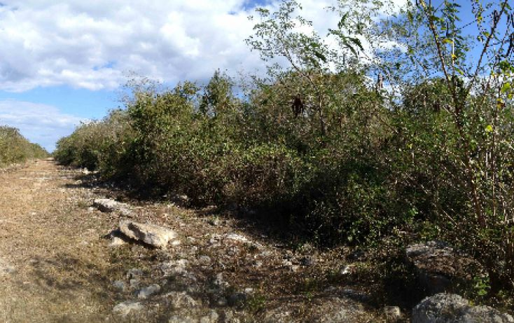 Foto de terreno habitacional en venta en, tixkuncheil, baca, yucatán, 1184905 no 07