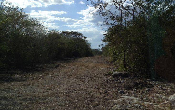 Foto de terreno habitacional en venta en, tixkuncheil, baca, yucatán, 1184905 no 08