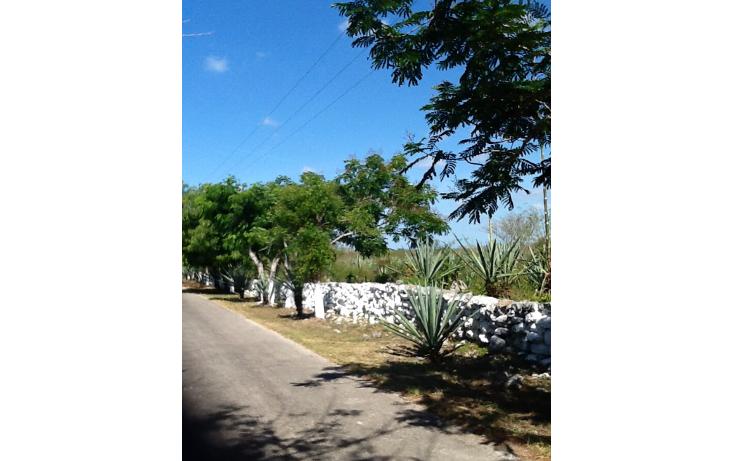 Foto de terreno comercial en venta en  , tixkuncheil, baca, yucatán, 1271347 No. 01
