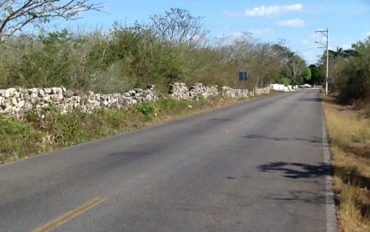 Foto de terreno comercial en venta en  , tixkuncheil, baca, yucatán, 1271347 No. 02