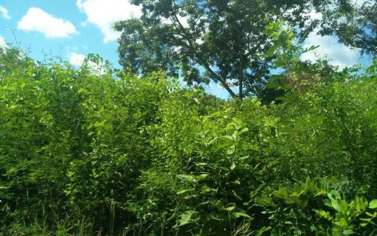 Foto de terreno habitacional en venta en  , tixmucuy, campeche, campeche, 1593838 No. 13