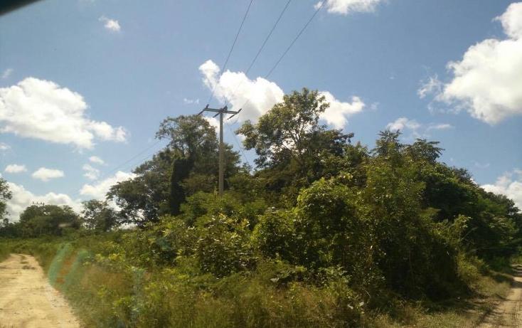 Foto de terreno habitacional en venta en  , tixmucuy, campeche, campeche, 1719580 No. 12