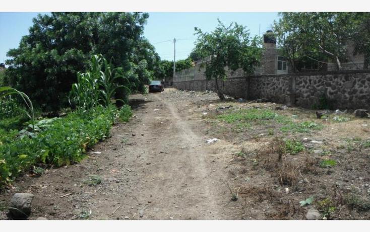 Foto de terreno habitacional en venta en  , tizapan el alto, tizapán el alto, jalisco, 840263 No. 04