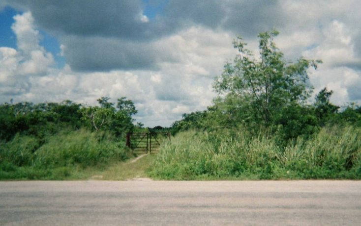 Foto de rancho en venta en  , tizimin centro, tizimín, yucatán, 1066641 No. 02