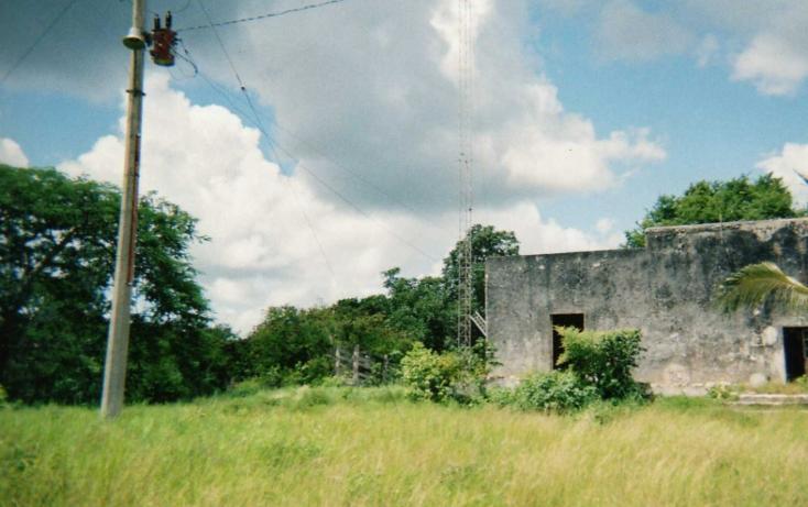 Foto de rancho en venta en  , tizimin centro, tizimín, yucatán, 1066641 No. 03