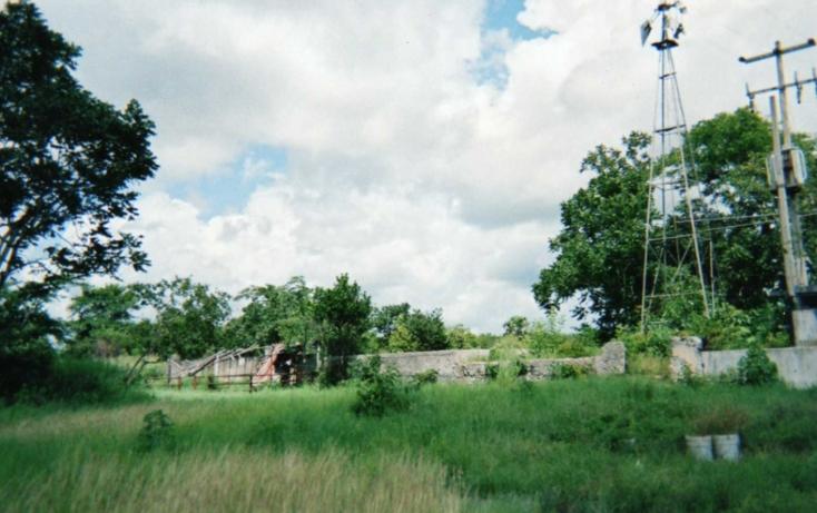 Foto de rancho en venta en  , tizimin centro, tizimín, yucatán, 1066641 No. 04