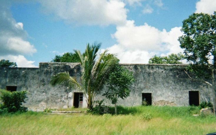 Foto de rancho en venta en  , tizimin centro, tizimín, yucatán, 1066641 No. 06